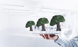 Eco绿化树提出的环境概念作为运作的mecha 库存图片