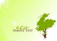 eco绿色结构树 库存照片