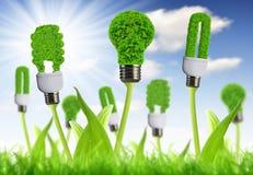 Eco能源电灯泡 库存照片