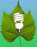 Eco能源 图库摄影