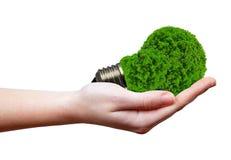 Eco能量电灯泡 库存照片
