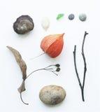 Eco集 免版税库存图片