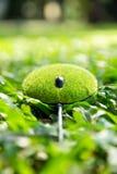 Eco鼠标概念 免版税库存照片