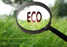 ECO-Ökologie lizenzfreie stockfotografie