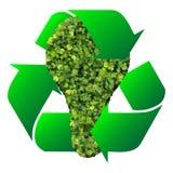 Eco żarówka robić od zielonych liści Zdjęcia Royalty Free