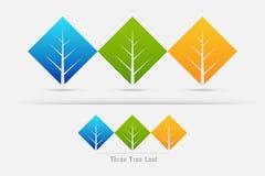 Eco życzliwy, trzy drzew liścia pojęcie Zdjęcie Royalty Free