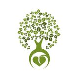 Eco δέντρων Στοκ εικόνα με δικαίωμα ελεύθερης χρήσης