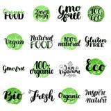 Eco, βιο, οργανικός, ελεύθερα, φυσικά τρόφιμα γλουτένης, εγγραφή Vegan Σύγχρονα συρμένα χέρι οικολογικά εικονίδια και διακριτικά  ελεύθερη απεικόνιση δικαιώματος
