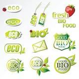 Eco βιο διανυσματική απεικόνιση