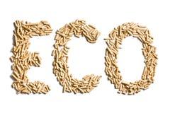 Eco λέξης φιαγμένο από ξύλινους σβόλους Στοκ Φωτογραφίες