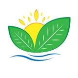 Eco изображения Bioorganic Стоковое Изображение