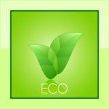 eco карточки Стоковые Фото