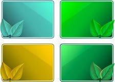 eco конструкции обрамляет листья Стоковое Изображение RF
