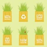 Eco рециркулирует сумку Стоковое Фото