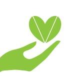 Eco руки и сердца Стоковые Фото