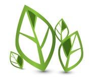 Eco绿色叶子 库存例证