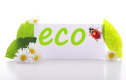 eco Στοκ εικόνα με δικαίωμα ελεύθερης χρήσης