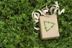 зеленый цвет подарка eco устойчивый Стоковое Фото