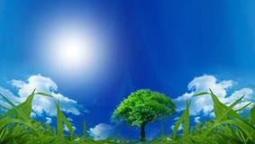 eco содружественное Стоковое Изображение