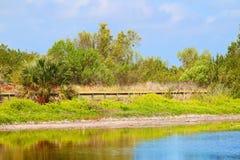 Eco池塘沼泽地国家公园 免版税库存图片