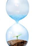 Eco概念 免版税库存照片