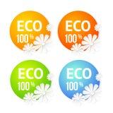 Έμβλημα Eco του λουλουδιού. Στοκ Εικόνες