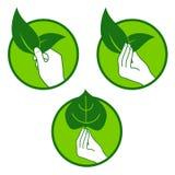 Eco赞成自然标志 免版税库存照片