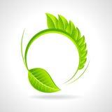绿色与叶子的eco友好的象在圈子 库存照片