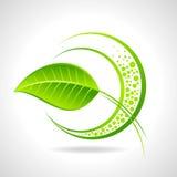 绿色与叶子的eco友好的象 库存图片