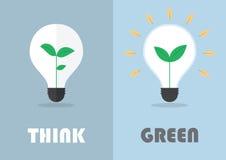 在一个电灯泡,绿色eco能量概念里面的一点植物 库存照片