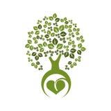 树eco 免版税库存图片