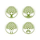 树eco 向量例证