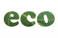Eco Royalty-vrije Stock Afbeeldingen