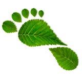 Eco-Abdruck stockbild