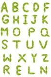 Eco alfabet Arkivfoto