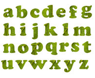 Eco alphabet Royalty Free Stock Photos