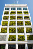 Eco architecture. Building with hydroponic plants instead of windows. Ecology house concept Royalty Free Stock Images