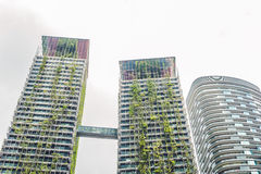 Eco architecture. Green skyscraper building with plants growing on the facade. Ecology and green living in city, urban environment Stock Photo