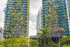 Eco architecture. Green skyscraper building with plants growing on the facade. Ecology and green living in city, urban environment Stock Photos