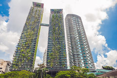Eco arkitektur Grön skyskrapabyggnad med växter som växer på fasaden Ekologi- och gräsplanuppehälle i staden, stads- miljö Fotografering för Bildbyråer