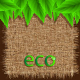 Eco background Stock Photo