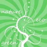 Eco background Stock Photos