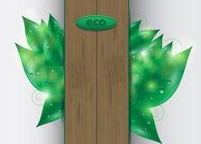 Eco background Royalty Free Stock Images
