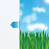 Eco background. Natural background.eco background.green grass with dew drops on a background of blue sky Royalty Free Stock Images