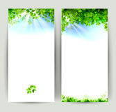 Eco background Royalty Free Stock Images