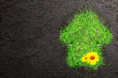 Eco background with soil and house of  grass Royalty Free Stock Photos