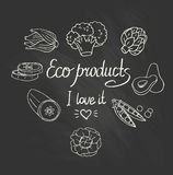 Eco background with vegetables on the chalkboard. Vector Eco background with vegetables on the chalkboard Stock Photography