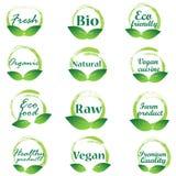 Eco badges le vecteur de logo illustration stock