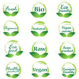 Eco badges logo vector Stock Images