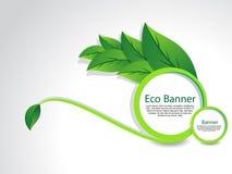 Eco baner med bladet Royaltyfria Bilder